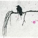 Crow VI